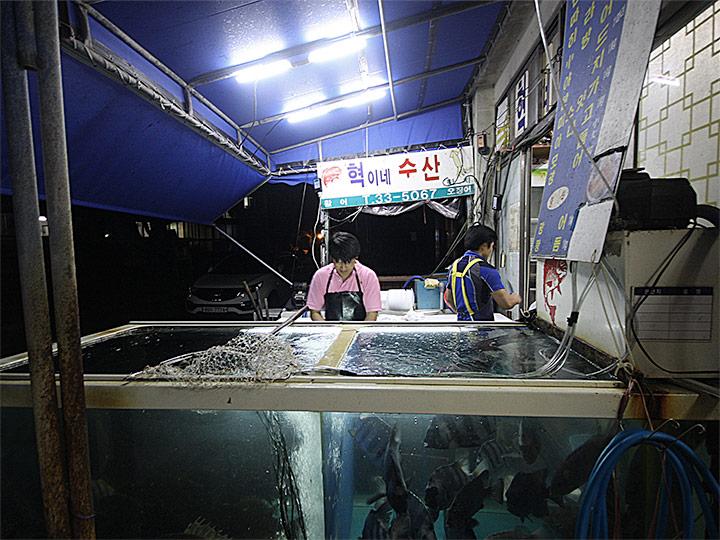방어와 히라스 맛집 혁이네수산