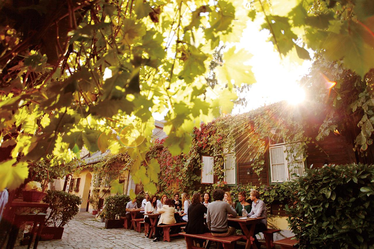 오스트리아 전통 음식과 와인을 즐길 수 있는 호이리거.