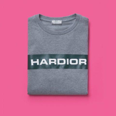 '하디올' 스웨트셔츠 가격 미정 디올 옴므.