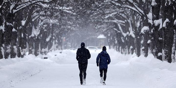 추운 바람에 맞서 달리는 러너를 위한 러닝화를 소개한다.