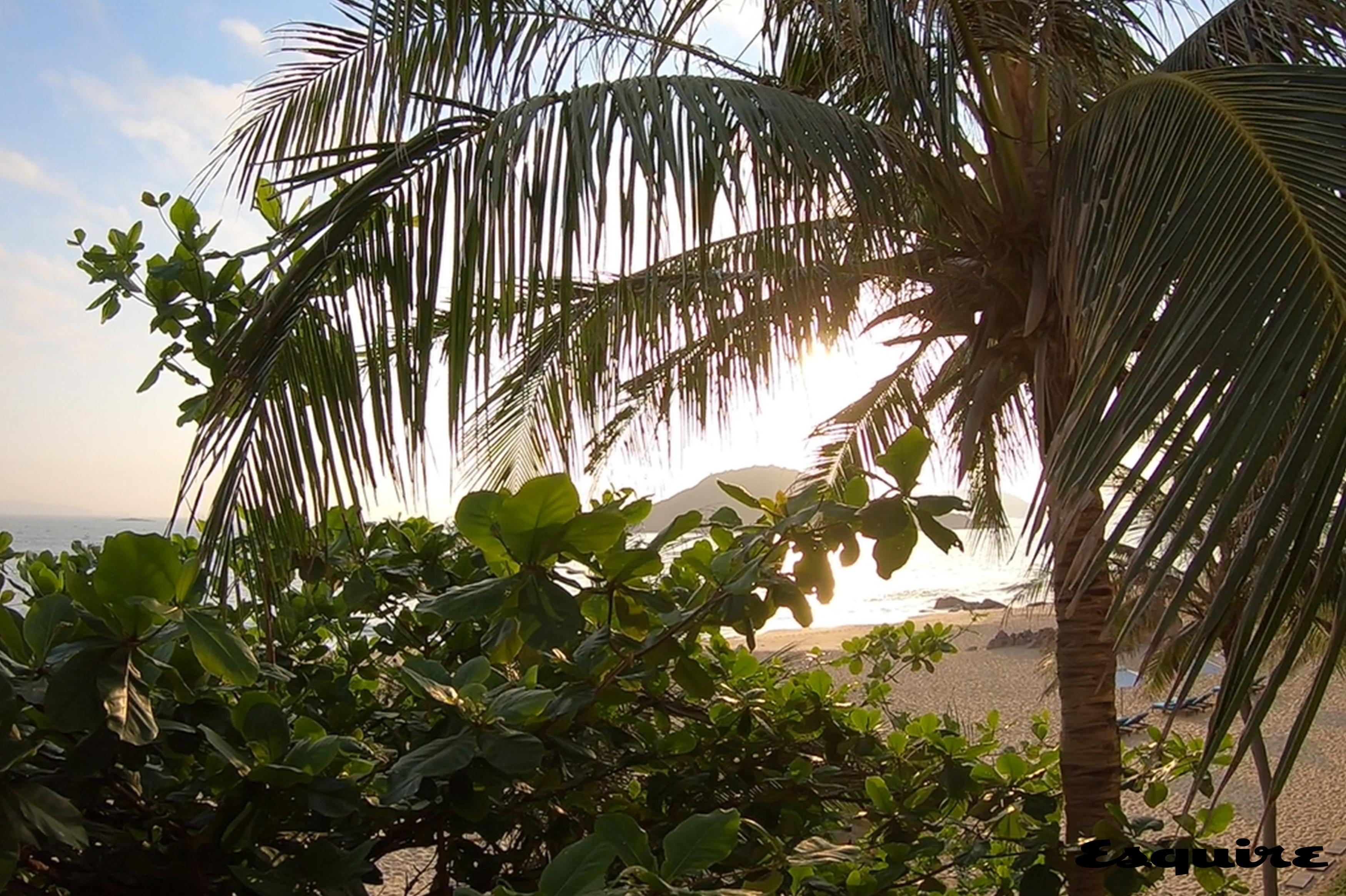 아바니 퀴논 리조트 테라스 풍경
